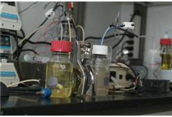 Microbial fuel cells converting chemical energy into