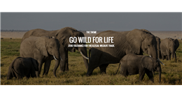 Combating Illegal Wildlife Trade on Worl ...