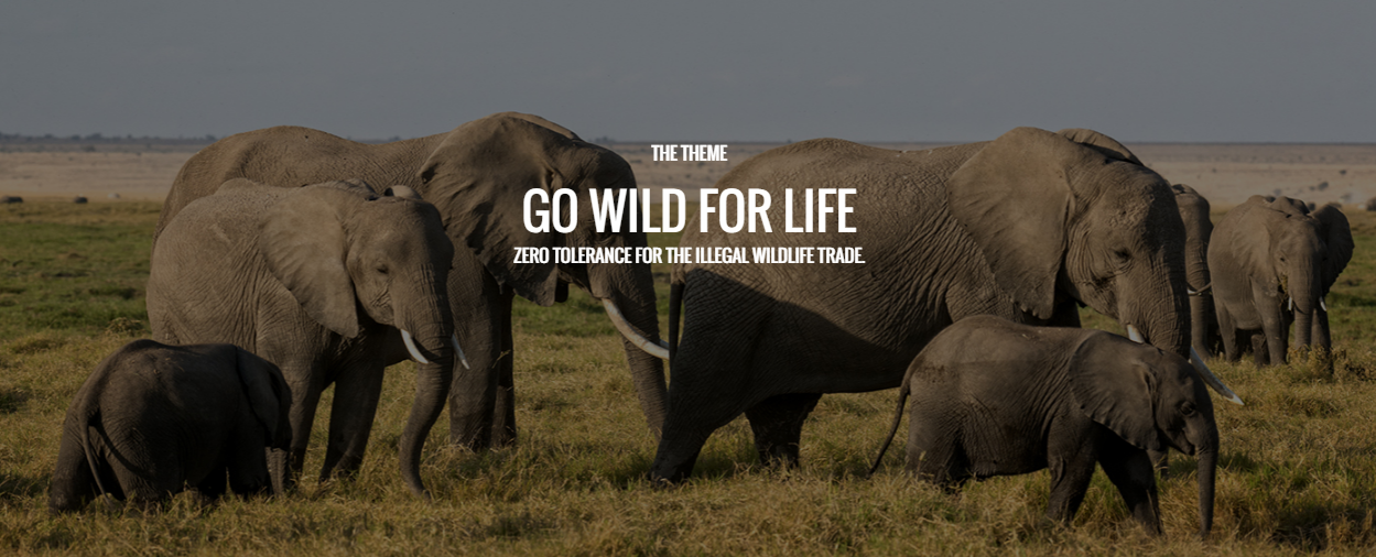 Combating Illegal Wildlife Trade on World Environment Day 2016