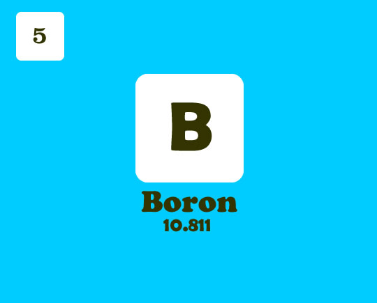 Everything About Boron