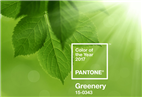Pantone unveils 2017 colour of the year: 15-0343 Greenery