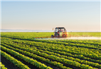 Indian agrochemical industry set for a growth phase