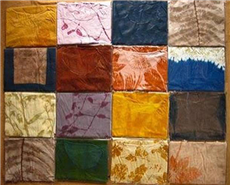 Researchers identify 12 natural dyes for textiles