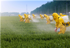 Time for India to have more say in global insecticides play