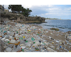 Dow commits $2.8 million to reduce marine debris