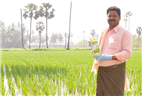 BASF enters Indian crop protection market; launches its fungicides
