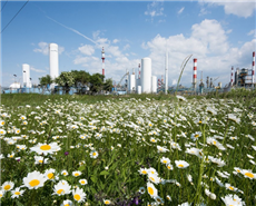 Solvay sells polyamide business BASF €1.6 billion