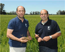 Bayer expands ForwardFarming platform to Latin America