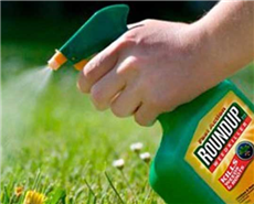Germany moving ahead with plans to restrict weed-killer glyphosate