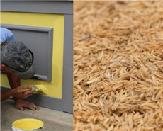 Indian researchers create eco-friendly, non-toxic 'paint' using rice husk