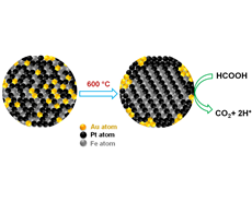 Gold nanoparticles improve fuel-cell reactions