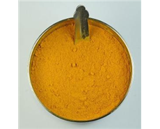 Turmeric found to stop RVF virus from multiplying