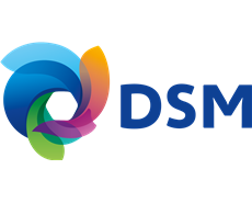 DSM to sell Euroresins to Cathay Investments