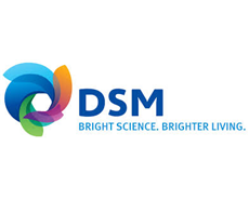 DSM, Ascend form global alliance for polyamide 66 compounds supply