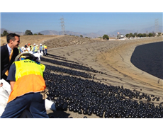 Black plastic balls to protect Los Angeles' water supply
