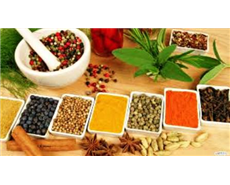 Ayurvedic, homeopathic medicines' clinical trials begin