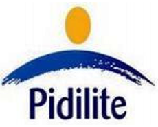 Pidilite Industries Buys Some Assets Cic Holdings