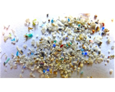 US President Obama signs ban on microbeads in beauty products