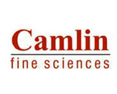 Camlin Fine Sciences acquires 65 pc stakes in Mexico's Dresen