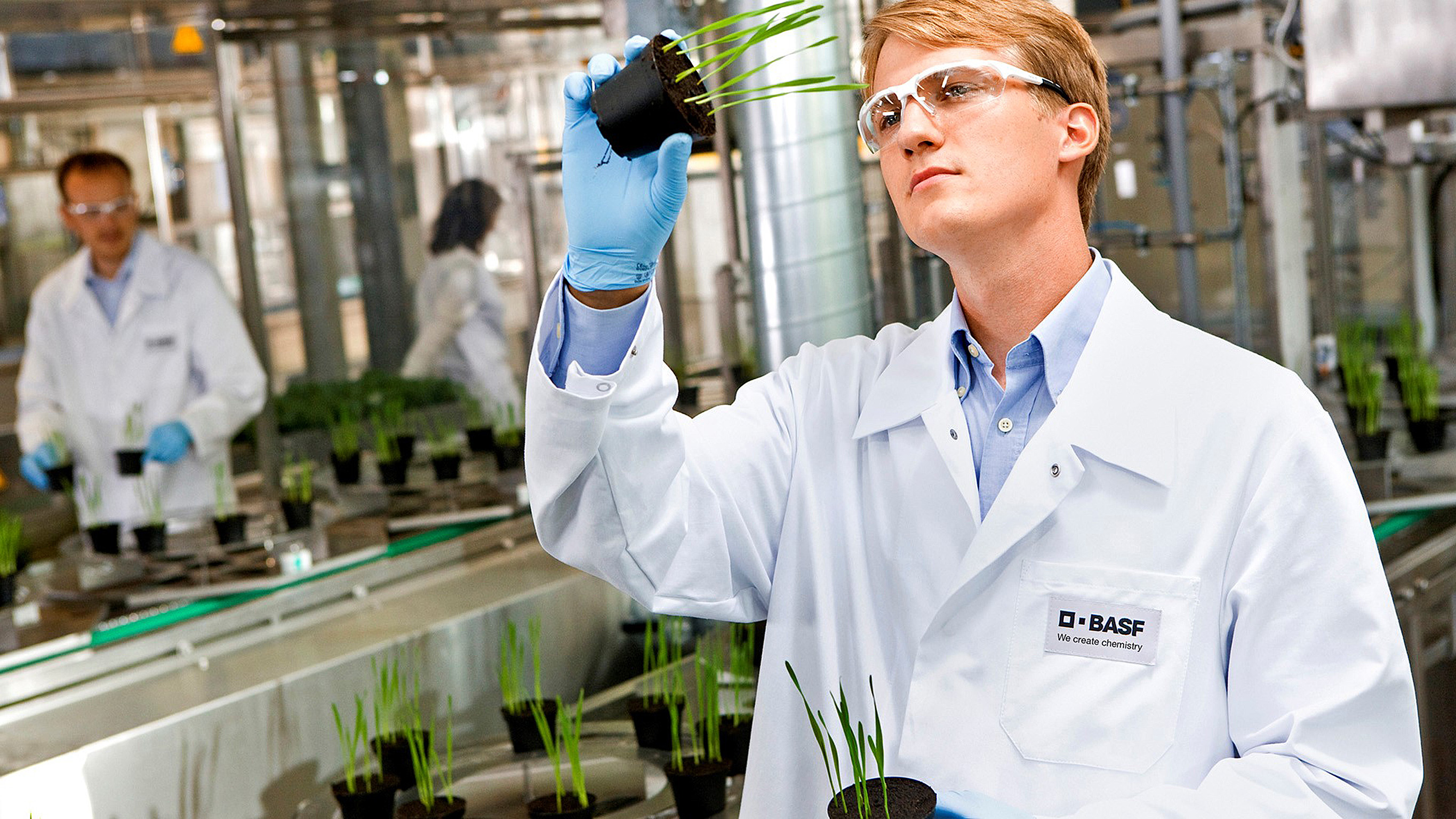 Basf Files Registration New Fungicide Revysol With