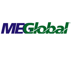 MEGlobal to build new monoethylene glycol facility at Dow's site in US