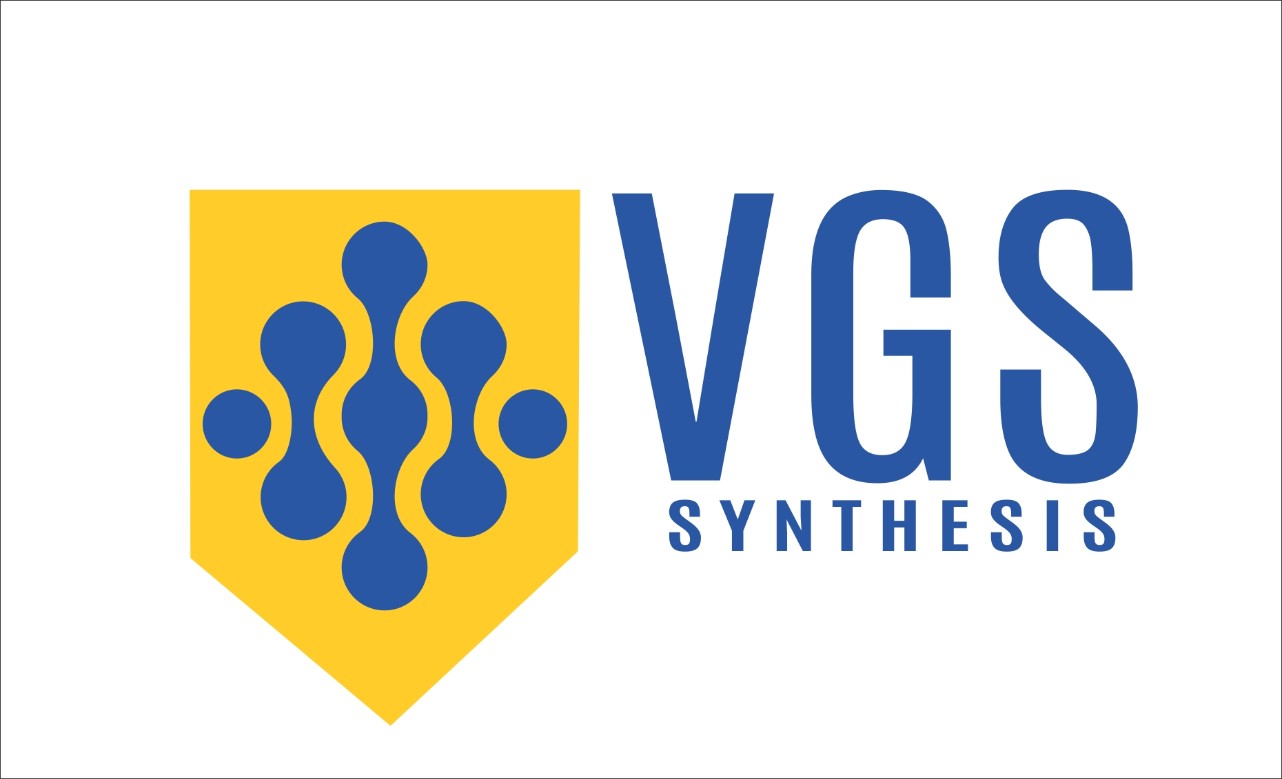 logo-VGS SYNTHESIS PVT LTD