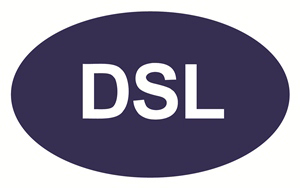 logo-DSL Chemicals (Shanghai) Co., Ltd