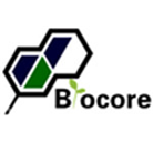 Biocore pharmtech Limited