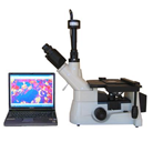 Professional Inverted Metallurgical Microscope