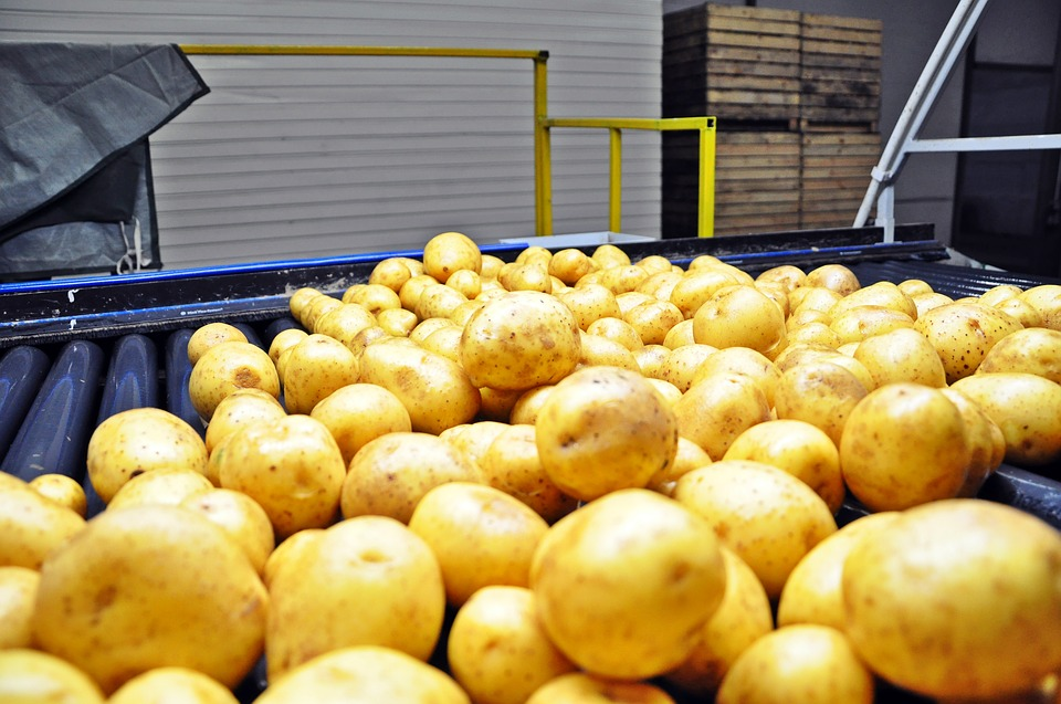 Antifoams and Defoamers for Potato Processing