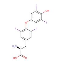 Levothyroxine Properties Molecular Formula Applications